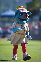 Spokane Indians mascot Doris the Spokanasaurus before a Northwest League game against the Vancouver Canadians at Avista Stadium on September 2, 2018 in Spokane, Washington. The Spokane Indians defeated the Vancouver Canadians by a score of 3-1. (Zachary Lucy/Four Seam Images)