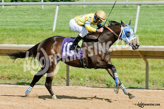 Breezy Pointess winning at Delaware Park on 6/29/13