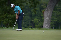 Gainesville, VA - August 1, 2015: Tiger Woods putts on the 12th hole in round 3 of the Quicken Loans National at the Robert Trent Jones Golf Club in Gainesville, VA, August 1, 2015. Woods finished the round at +3, placing him 9 shots off the lead.  (Photo by Don Baxter/Media Images International)