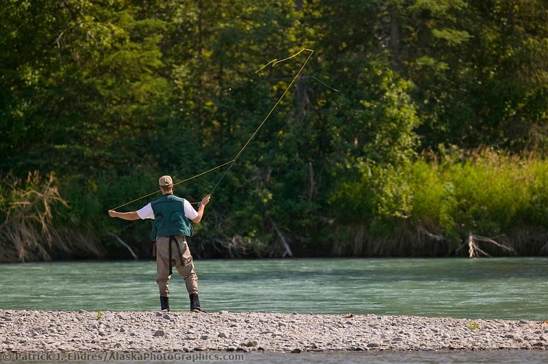Fly fishing for red salmon on the Kenai River, Kenai Peninsula, Alaska