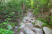 Stone staircase along Valley Way in the New Hampshire White Mountains during the summer months.
