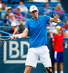 Kevin Anderson (RSA) falls to Donald Young (USA) 36 76(3) 62 at the Citi Open in Washington, DC on August 1, 2014.