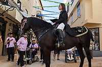 "Spain. Balearic Islands. Minorca (Menorca). Mahon. A horse at  ""Festes de la Mare de Déu de Gràcia"" during the traditional summer festival. The Menorquín is a breed of horse indigenous to the island and is closely associated with the doma menorquina style of riding. The riders wear black and white and most of their horses (adorned with ribbons and multi-coloured rosettes) are of the highly-considered Menorcan breed. The riders and their horses parade through the streets, and these magnificent and remarkably calm horses rear up on their hind-legs to the delight of the crowd. The most valued quality of Menorquín horse is its suitability for the traditional festivals of Menorca. Horses and riders are at the centre of local fiesta celebrations, in a tradition that may go back to the 14th century and incorporate elements of Christian, pagan and Moorish ritual. Some 150 riders participate in the festival in Mahón. Touching the horses is believed to bring good luck. Maó (in Catalan) and Mahón (in Spanish), written in English as Mahon, is a municipality, the capital city of the island of Menorca, and seat of the Island Council of Menorca. The city is located on the eastern coast of the island, which is part of the autonomous community of the Balearic. In Spain, an autonomous community is a first-level political and administrative division, created in accordance with the Spanish constitution of 1978, with the aim of guaranteeing limited autonomy of the nationalities and regions that make up Spain. 8.09.2019 © 2019 Didier Ruef"
