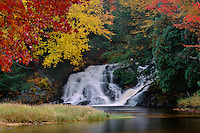 Red maple and Twin Falls,  South Branch Grass River<br /> Tolly Pond Forest Preserve<br /> Adirondack Park,  Adirondack Mountains<br /> St. Lawrence County,  New York