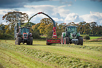 Forage harvesting grass for silage in November, Tattenhall, Cheshire.