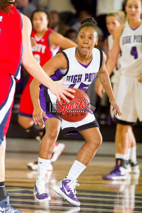 Ashante Richard (15) of the High Point Panthers on defense during first half action against the Liberty Flames at Millis Athletic Center on February 2, 2013 in High Point, North Carolina.  The Flames defeated the Panthers 67-59.   (Brian Westerholt/Sports On Film)