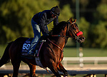 OCT 29: Breeders' Cup Turf Sprint entrant Legends of War, trained by Doug F. O'Neill, gallops at Santa Anita Park in Arcadia, California on Oct 29, 2019. Evers/Eclipse Sportswire/Breeders' Cup