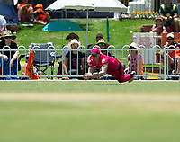 24th November 2019; Lilac Hill Park, Perth, Western Australia, Australia; Womens Big Bash League Cricket, Perth Scorchers versus Sydney Sixers; Hollie Ermitage of the Sydney Sixers catches out Amy Jones of the Perth Scorchers with a diving catch on the boundary - Editorial Use