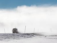 A snow coach buzzes through Yellowstone's interior in winter.