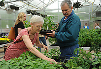 NWA Democrat-Gazette/ANDY SHUPE<br /> Linda Hendricks and Ray Wymore of Fayetteville shop Thursday, April 20, 2017, for tomato and pepper plants at the Fayetteville High School plant sale in the school's greenhouse. The plants were grown by students in plant science and greenhouse management classes to benefit those courses and the school's National FFA Organization program.