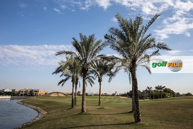 Palm trees line the left side of the 14th fairway at The Address Montgomerie Golf Club, Dubai, United Arab Emirates.  27/01/2016. Picture: Golffile | David Lloyd<br /> <br /> All photos usage must carry mandatory copyright credit (&copy; Golffile | David Lloyd)