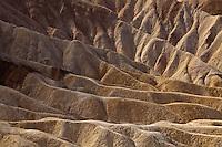 The Sands in the Desert
