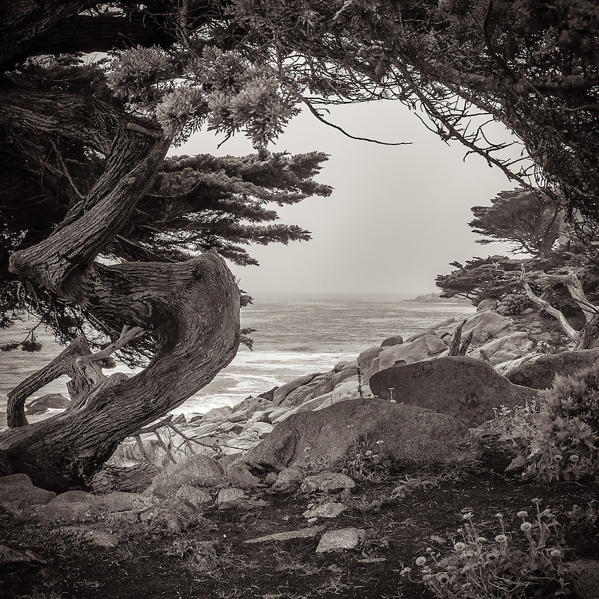 This image was selected to be part of an international landscape photography exhibit held during the Head On Photo Festival. It was exhibited at the Pine Street Gallery in Sydney, NSW, Australia in May/June, 2014.