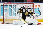 Stockholm 2013-12-07 Ishockey Elitserien AIK - Skellefte&aring; AIK :  <br /> AIK:s m&aring;lvakt Daniel Larsson <br /> (Foto: Kenta J&ouml;nsson) Nyckelord:  AIK Skellefte&aring; SAIK portr&auml;tt portrait