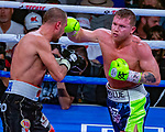 Canelo  Alvarez   Guadalajara, Mex. defeats Sergey, Kovalev Chelyabinsk, Rus in the 11th round WBO Heavyweight Title