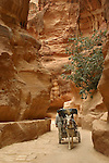. Entring Petra by walking in the Siq and discover sudenly the facade of the Khaznah. Petra. Jordan