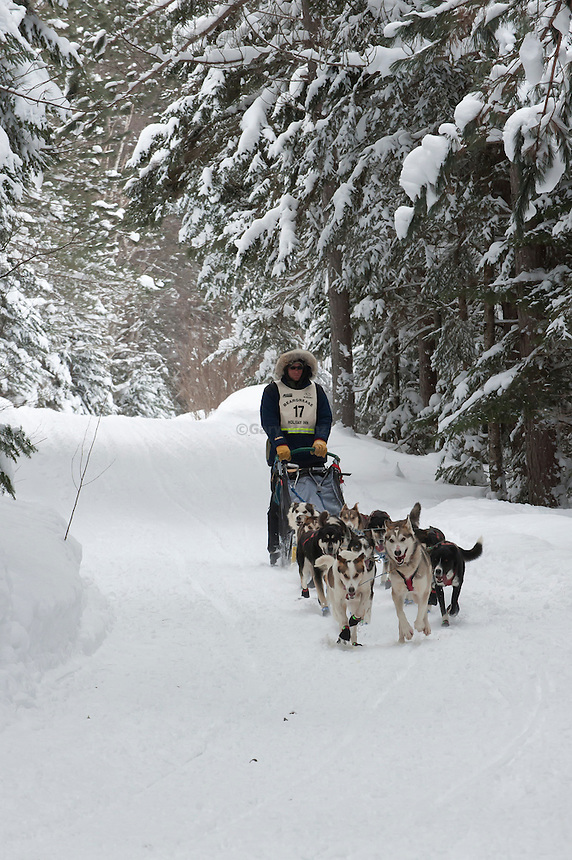 Ryan Anderson the 2011 winner of the John Beargrease sled dog Marathon on the trail near Tofte Minnesota.