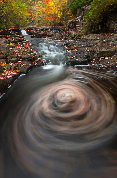 An eddy full of autumnal leaves swirls in Duck Brook in Acadia National Park, Maine, USA