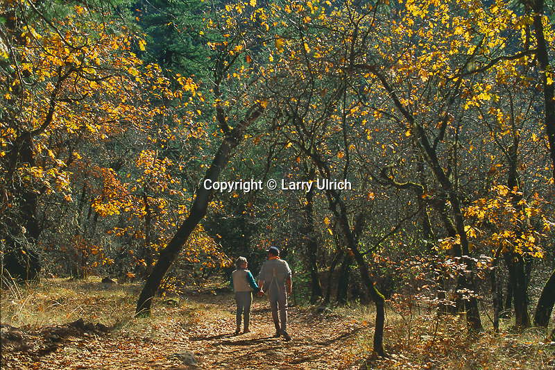 Couple walking<br />
