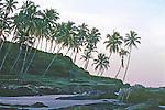 Goa / Baga