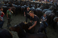 A &quot;aloitador&quot; trying to tame a beast during Rapa das Bestas in Sabucedo (Galicia), on July 6, 2013. When summertime comes in Galicia (Northwest of Spain), the use of &ldquo;curro&rdquo; begins. A ritual which preserves the free and wild spirit of this region which has remained traditionally tied to nature.<br />