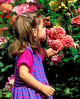 GIRL, 4 YEARS OLD, SMELLING ROSES.