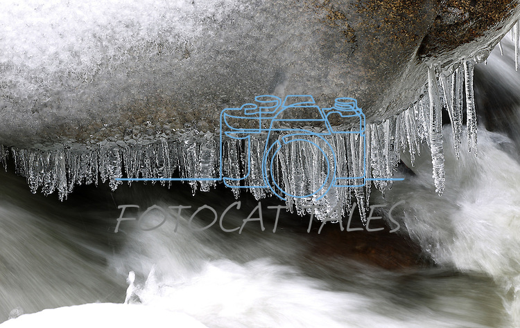 Icicles form on a boulder in the Carson River, seen Tuesday, Dec. 21, 2010, near Woodfords, Ca..Photo by Cathleen Allison