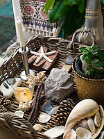 A collection of objects found in the countryside around Schoenning's home is displayed in a basket in the living room