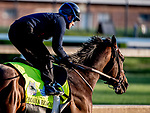 LOUISVILLE, KENTUCKY - APRIL 27: Omaha Beach, trained by Richard Mandella, exercises in preparation for the Kentucky Derby at Churchill Downs in Louisville, Kentucky on April 27, 2019. Scott Serio/Eclipse Sportswire/CSM