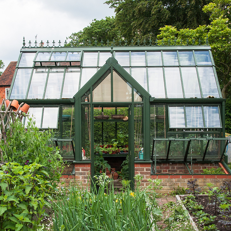 Greenhouse, Fairlight End, Pett, East Sussex, late June.