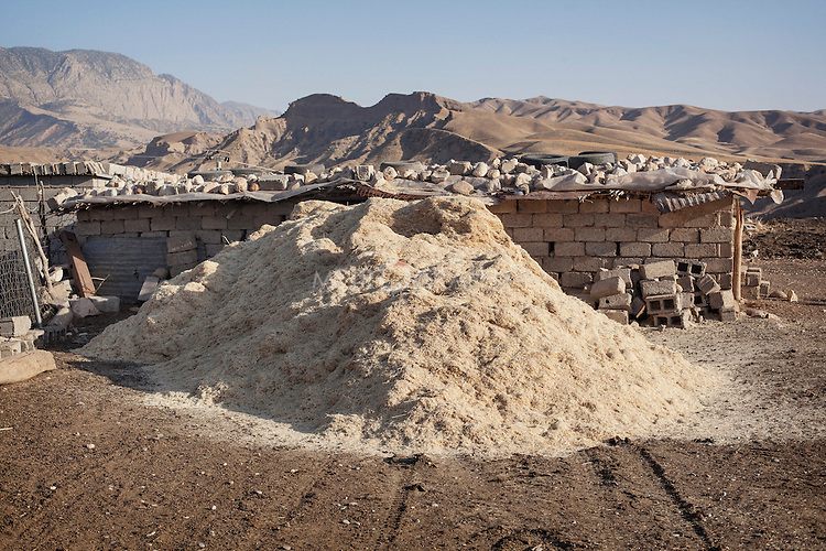 16/05/15. Awbar Village, Darbandikhan area, Iraq. -- A pile of fodder in the farm of Najm.