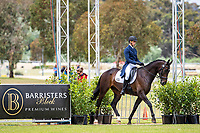 AUS-William Baxter rides Kdale Mr Collins during the Dressage for the Horseland CCI3*-L. 2019 AUS-Mitsubishi Motors Australian International 3 Day Event. Victoria Park. Adelaide. South Australia. Thursday 14 November. Copyright Photo: Libby Law Photography