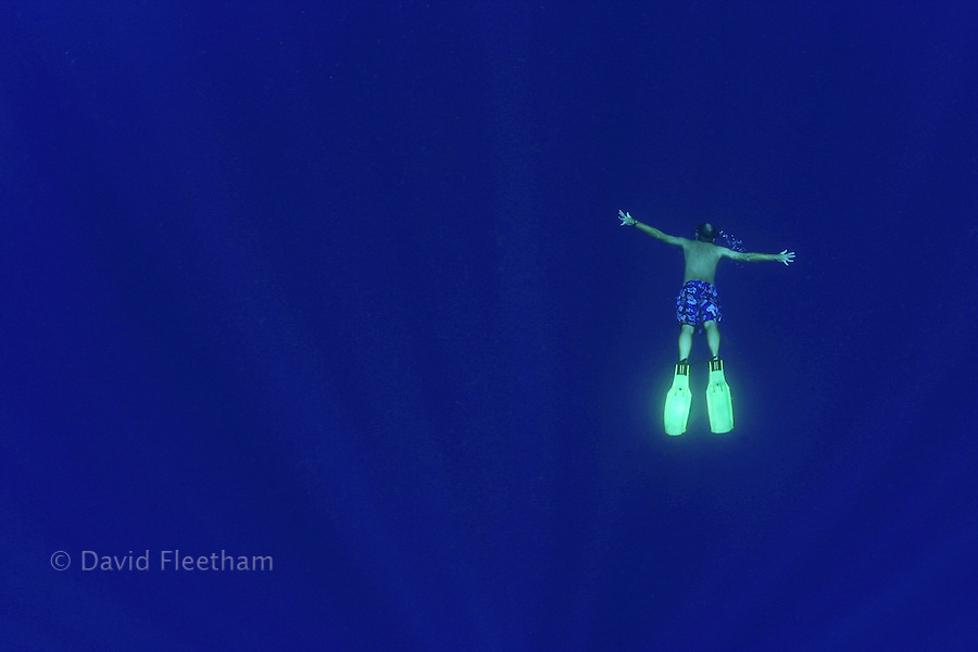 This free diver (MR) is hanging in midwater a mile off the Kona Coast in 4000 feet of water.  Hawaii.
