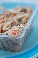 Europe/France/Aquitaine/33/Gironde/Macau: Crevettes de l'estuaire à l'anis à la guinguette: Chez Quinquin