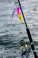Saltwater fishing rod and lure.