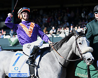 LEXINGTON, KY - APRIL 08: Sailor's Valentine wins the 80th running of the Central Bank Ashland (Grade 1) $500,000 for owners Semaphore Racing and Homewrecker Racing, trainer Eddie Kenneally and jockey Corey Lanerie.  April 08, 2010
