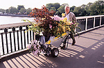 Chelsea Flowers Show last day taking home flowers sold cheaply at the end of the show London Uk 1986. Pushing flowers bought across Chelsea Bridge.