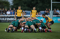 A scrum during the Greene King IPA Championship match between Ealing Trailfinders and London Irish Rugby Football Club  at Castle Bar, West Ealing, England  on 1 September 2018. Photo by David Horn.