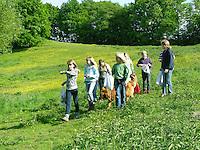 Kinder ernten, sammeln Kräuter im Frühjahr für Kräutersuppe und Wildgemüse - Salat, Wildkräuter, Ernte, Kräutersammeln, essbare Wildkräuter