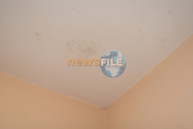 Damp Roof in THomas Brady's home, 20  St Finians Bungalows....Photo NEWSFILE/Jenny Matthews.(Photo credit should read Jenny Matthews/NEWSFILE)....This Picture has been sent you under the condtions enclosed by:.Newsfile Ltd..The Studio,.Millmount Abbey,.Drogheda,.Co Meath..Ireland..Tel: +353(0)41-9871240.Fax: +353(0)41-9871260.GSM: +353(0)86-2500958.email: pictures@newsfile.ie.www.newsfile.ie.FTP: 193.120.102.198.