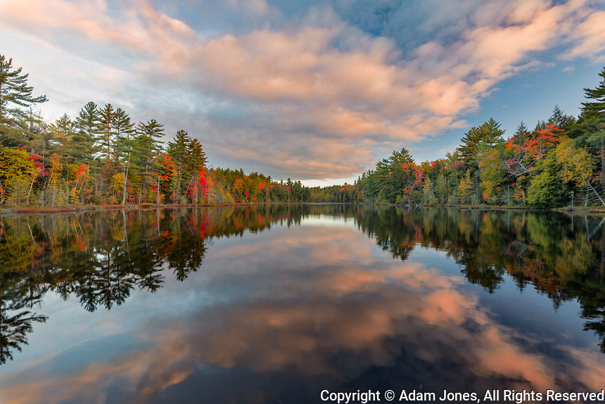 Fall colors on shoreline of Irwin Lake, Hiawatha National Forest, Alger County, Upper Peninsula of Michigan.