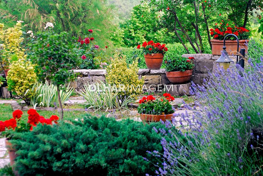 Jardim de Geraneos no Vale do Chianti. Toscana. Itália. 2006.