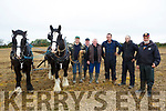 At the Abbeydorney Ploughing Match on Sunday were Martin Maloney, Kevin Maloney, Thomas Barry, Stephan Lavin, William O'Sullivan and Michael O'Dea