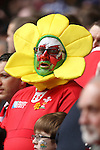 A colourful Welsh supporter..RBS 6 Nations 2012.Wales v France.Millennium Stadium.17.03.12..CREDIT: STEVE POPE-SPORTINGWALES