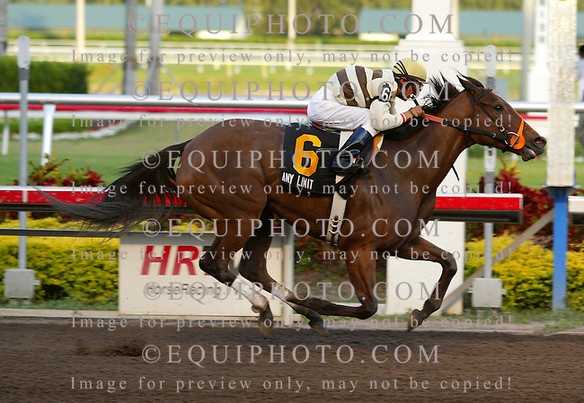 Any Limit #6 with Rafael Bejarano riding won the First Lady Handicap at Gulfstream Park in Hallandale, Florida. Photo By Justin Dernier/EQUI-PHOTO. 1/20/07