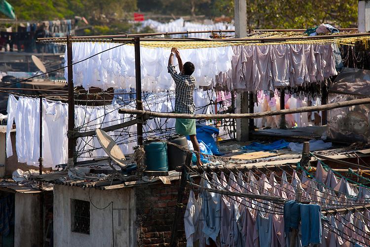 Traditional Indian professional hand laundry, Dhobi Ghat, and laundryman hanging clothes to dry in Mahalaxmi, Mumbai, India