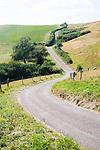 Narrow winding country road passing through countryside near Abbotsbury, Dorset, England