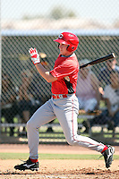 Sean Conner, Cincinnati Reds 2010 minor league spring training..Photo by:  Bill Mitchell/Four Seam Images.