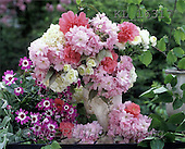 Interlitho, Alberto, FLOWERS, photos, summerflowers(KL16317,#F#)