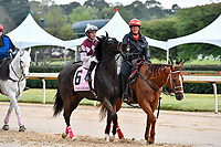HOT SPRINGS, AR - APRIL 13:  Apple Blossom Handicap at Oaklawn Park on April 13, 2018 in Hot Springs, Arkansas. #6 Streamline with jockey Gary L. Stevens.  (Photo by Ted McClenning/Eclipse Sportswire/Getty Images)